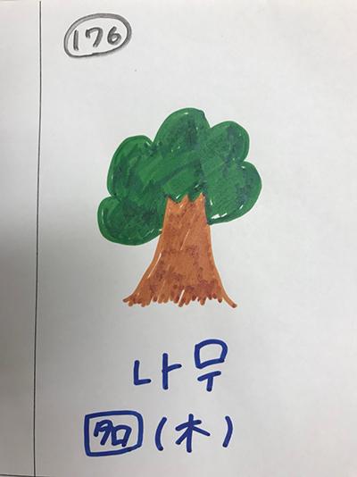 나무:木(インパクト単語帳)