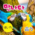 20韓国語動詞_会う만나다